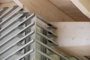 Modern house - Organic shape as inspiration